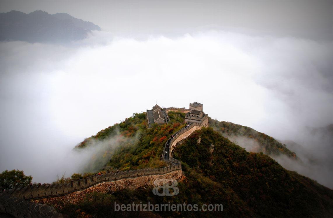 Acupuntura y Medicina Tradicional China en Segovia