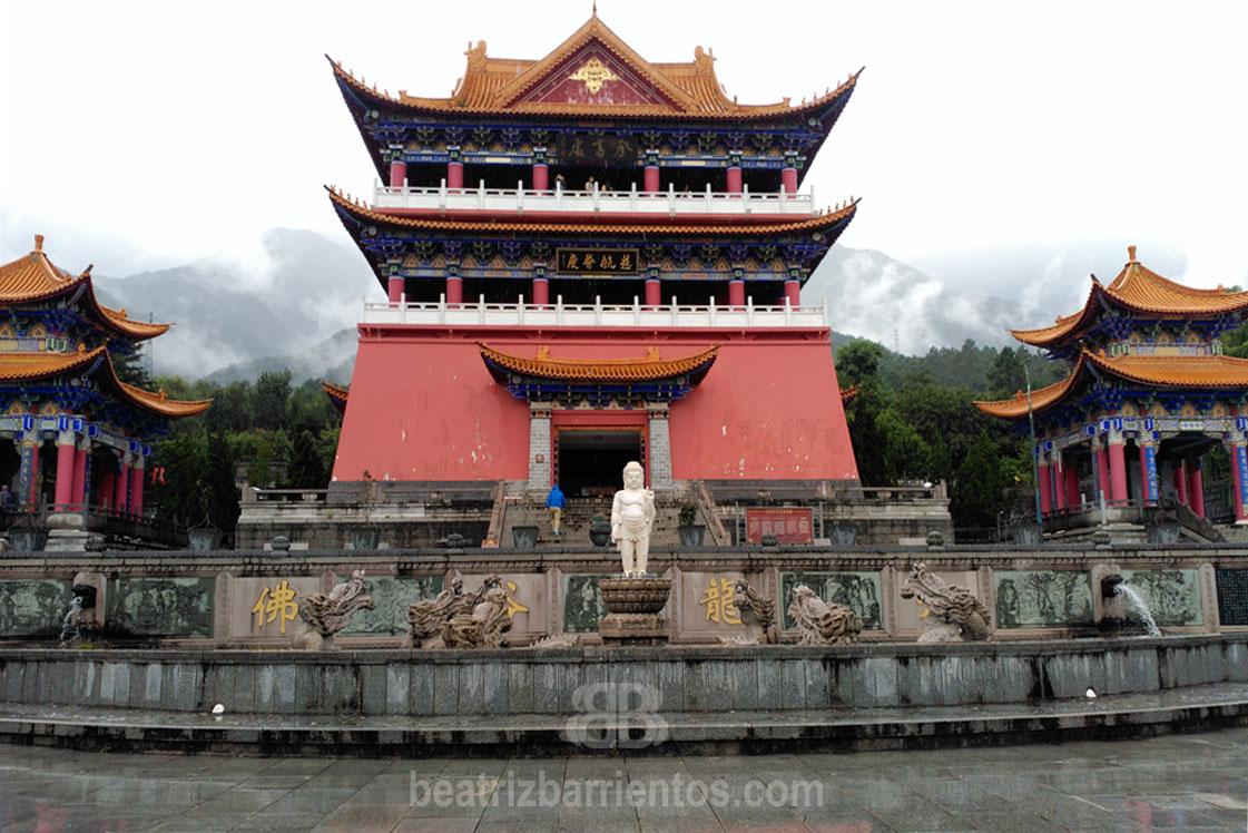 ¿Conoces la Medicina Tradicional China?